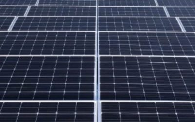 Almost 800 solar panels on our roof!